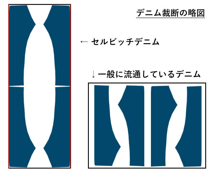 セルビッチパターン略図